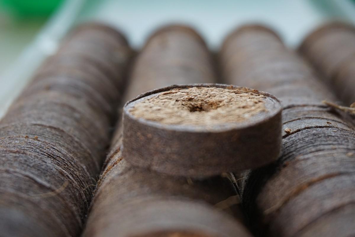 Stapel Kokos-Quelltabletten